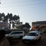 Kenya / Kericho / Early Morning