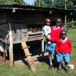 Kenya / Kericho / Chepkurbet